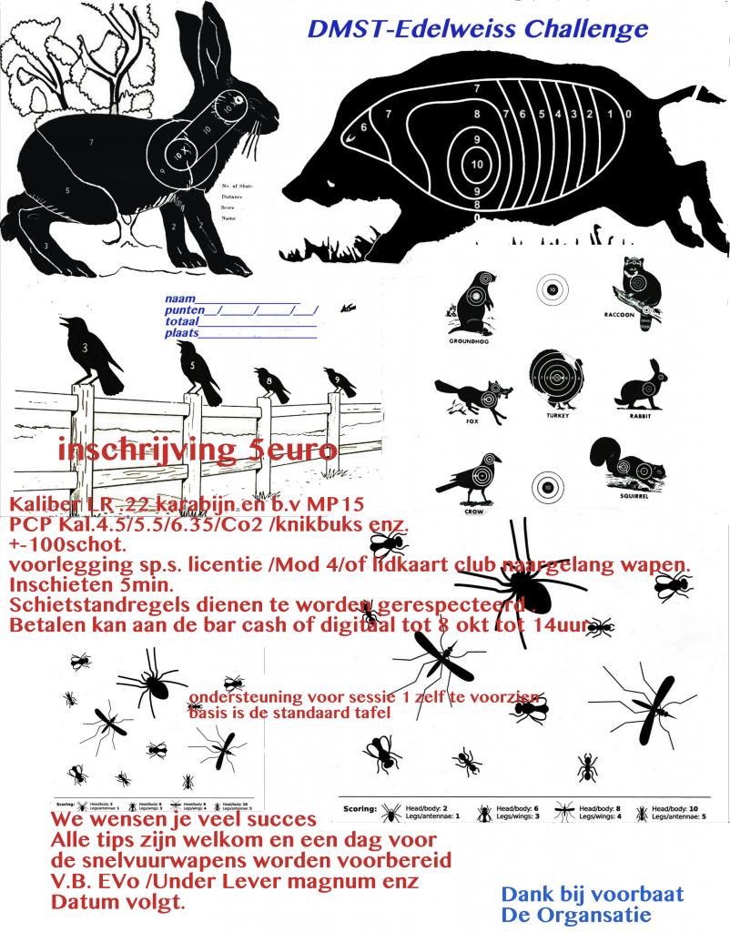 Poster DMST Edelweiss Challenge